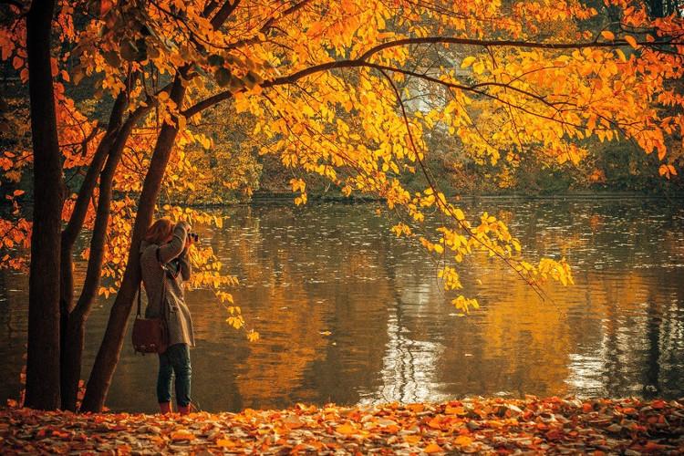 Outono chegando: peças para a mudança de estação!